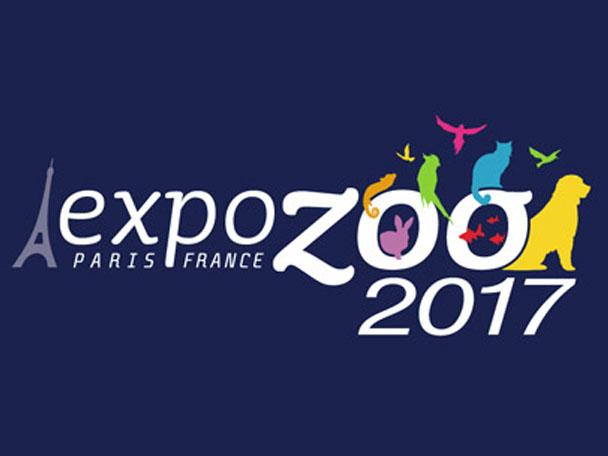 montage_expozoo2017