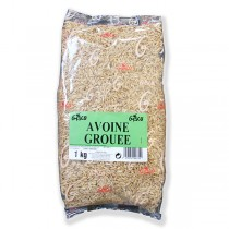 GASCO AVOINE GROUEE 1 KG