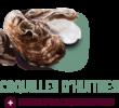 coquille d'huître alimentation gasco