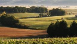 paysage issu de notre coopérative gasco