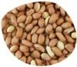 Graines d'arachides décortiquées