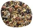 Gasco étoilée graines décortiquées frugivores