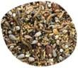 Gasco étoilée graines décortiquées insectivores